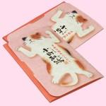 京都伝統あぶらとり 小町和紙【ごろ猫】2冊セット(内容)