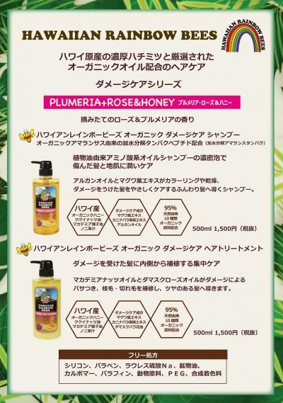 【規定書】ハワイアンレインボービーズ(4)
