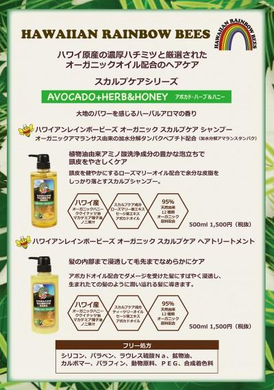 【規定書】ハワイアンレインボービーズ(5)