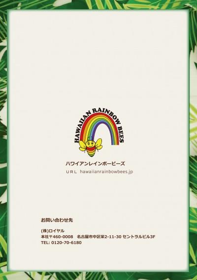 【規定書】ハワイアンレインボービーズ(12)